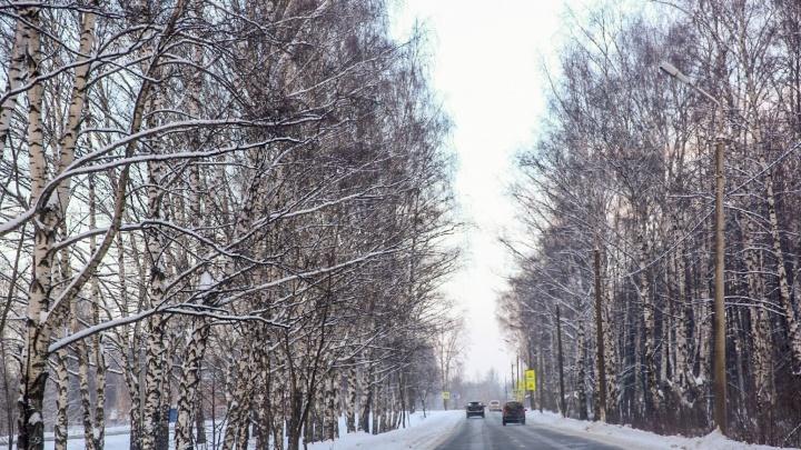 На выезде из Ярославля размежуют огромный участок промышленной земли