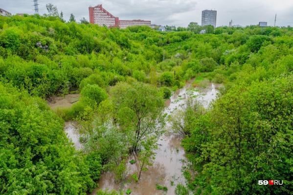 Фото реки Егошихи сделано с бывшего трамвайного мостика