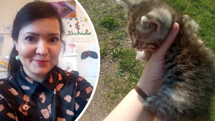 «Животные и бездомные люди — самые уязвимые»: история о том, как котенок вскрыл две серьезные проблемы в Башкирии