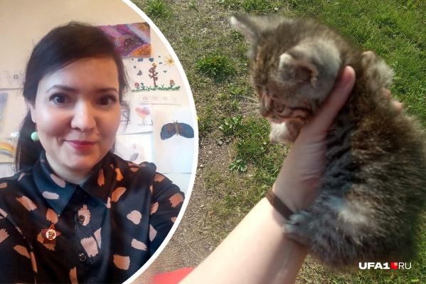 Эльза пыталась вылечить котенка в местной клинике