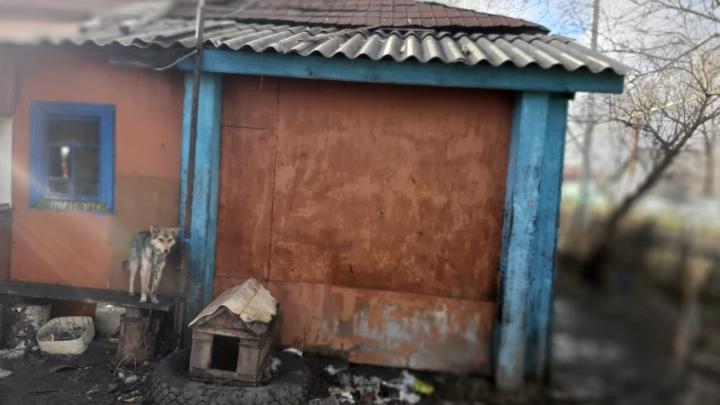 Самому младшему было 2 года: на пожаре в НСО сгорели трое детей и двое мужчин