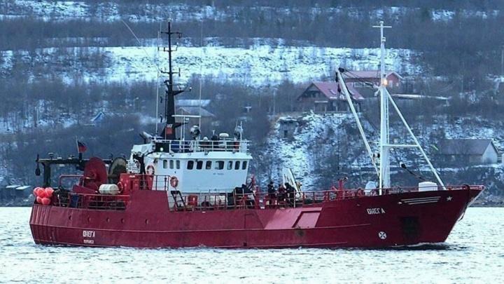 «Главное — денег срубить для начальства»: реплики рыбаков и другие детали о затонувшем судне «Онега»
