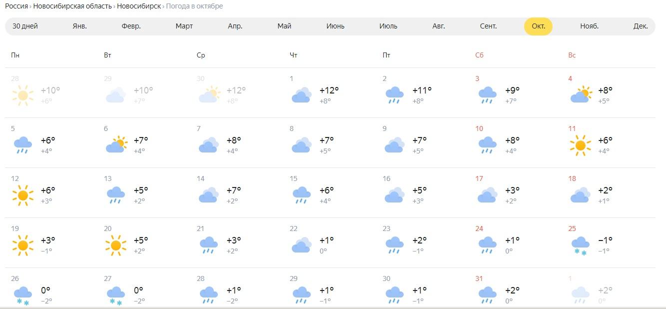 «Яндекс.Погода» обещает новосибирцам пасмурный октябрь