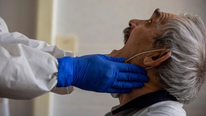 В Тюменской области — 23 человека за сутки заболели коронавирусом. Это чуть меньше, чем днем ранее