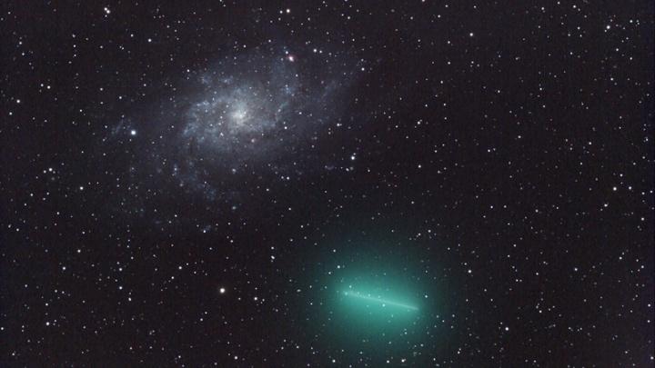 До 50 падающих звезд в час: Новосибирск ждет пик метеорного потока Урсиды