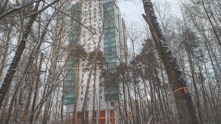 В Перми на публичных слушаниях обсудят строительство общежития РЖД в Черняевском лесу
