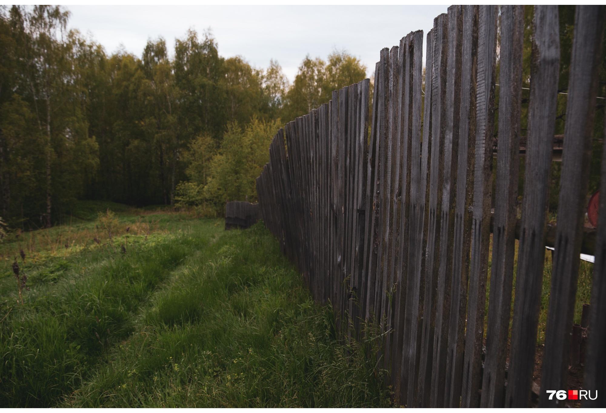 А за забором — огород