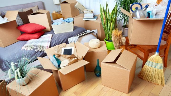 Переезд по плану: кому доверить перевозку имущества в другой город