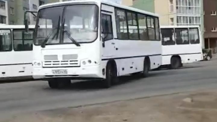 В Челябинск пригнали новую партию маршруток из Твери. Теперь белые ПАЗы