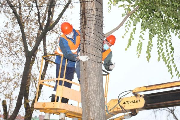 По данным мэрии, на деревьях разместят в общей сложности около 100 км гирлянд