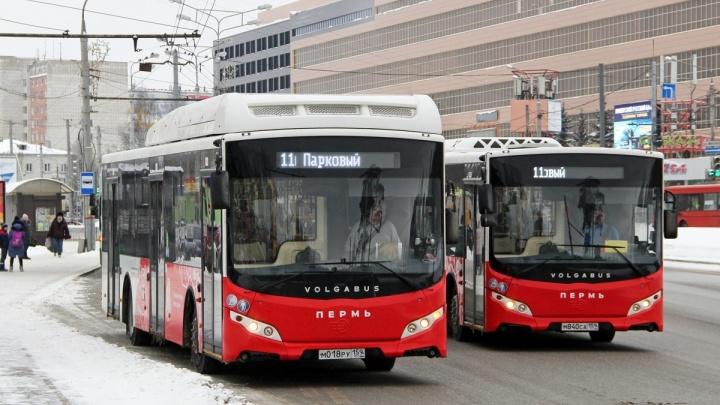 С 1 апреля стартует первый этап внедрения в Перми единой маршрутной сети. Обо всех изменениях — в одном тексте