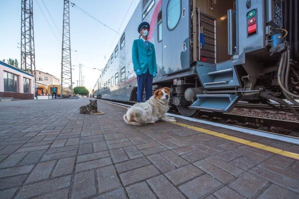 Первый поезд из Омска в Симферополь отправится 16 декабря