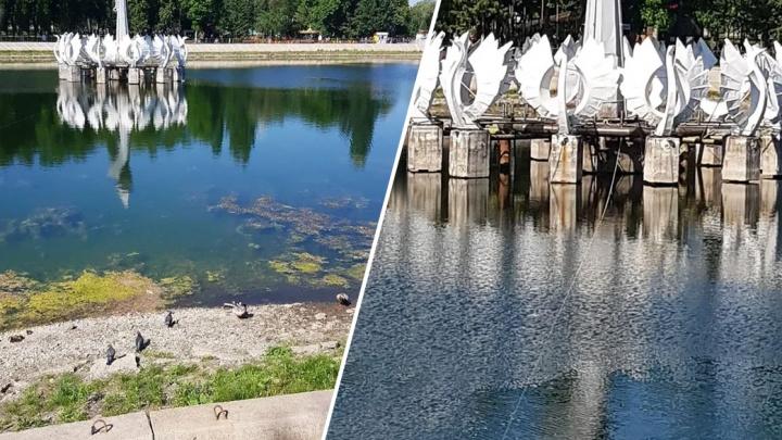 В Самаре пересохло озеро в парке Металлургов