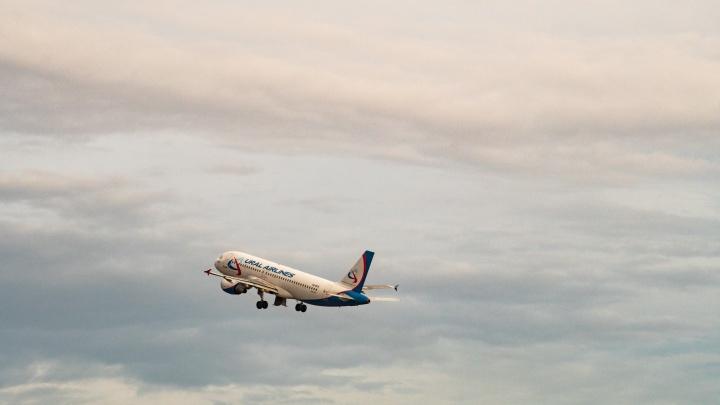 Из Омска запустили рейс в Баку за 33 тысячи рублей