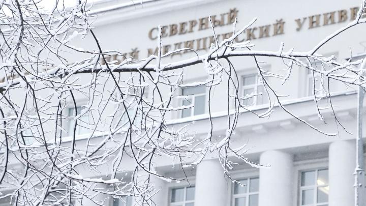 В Архангельске создадут центр арктической медицины — он будет работать на базе СГМУ