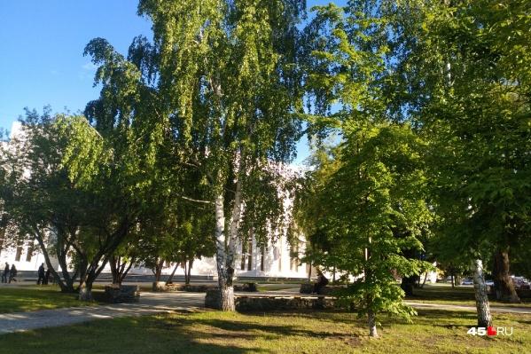 Илья Винштейн считает, что это лето порадует зауральцев комфортной погодой