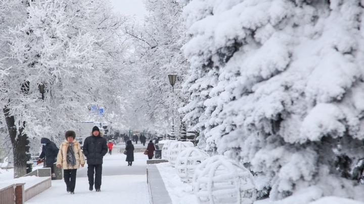 Деревья укутались в белые покрывала: любуемся морозной Уфой