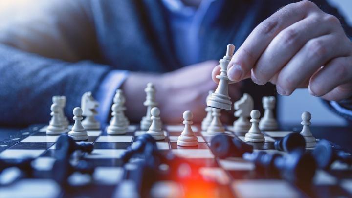 Скучно не будет: в Красноярском крае стартовал шахматный онлайн-турнир для тех, кто остаётся дома