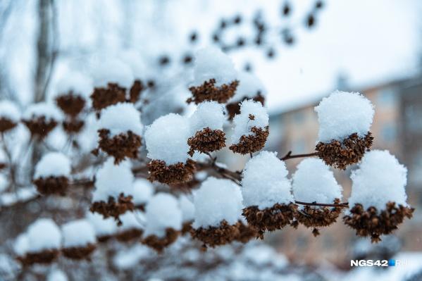 Уже в среду, по прогнозу синоптиков, снег прекратится