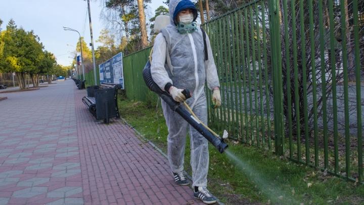 Клещи проснулись раньше. Когда в Челябинске от них обработают парки и скверы