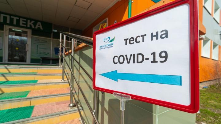 Пермякам будут сообщать результаты тестов на коронавирус через СМС