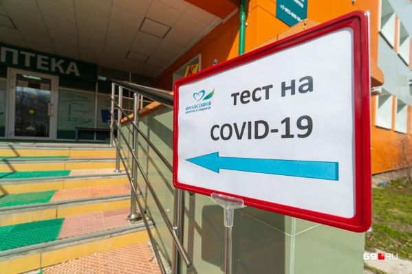 За сутки лаборатории края подтвердили коронавирусную инфекцию у 512 человек