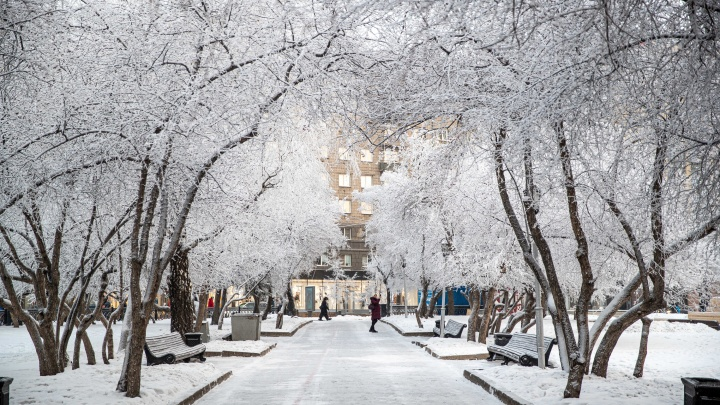 Наступила сказка. 9 волшебных кадров с улиц Новосибирска — посмотрите, как город укутали снег и иней
