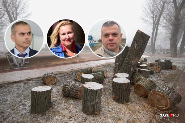 Активисты считают, что вырубкой деревьев в Ростове часто занимаются некомпетентные люди