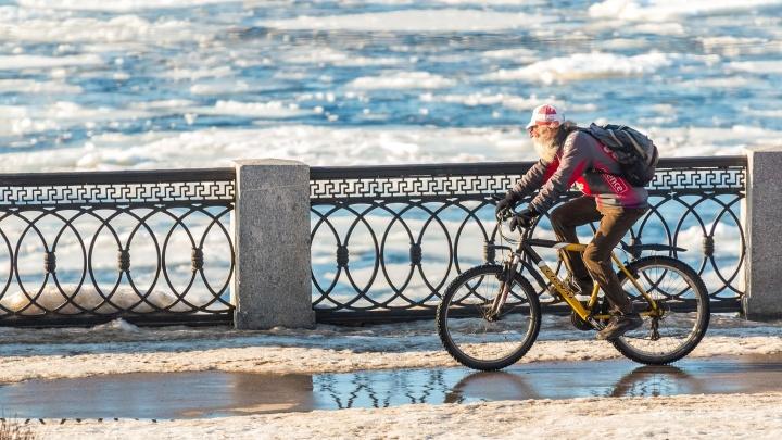 В Самарской области аномально теплый февраль побил температурные рекорды 1955 года