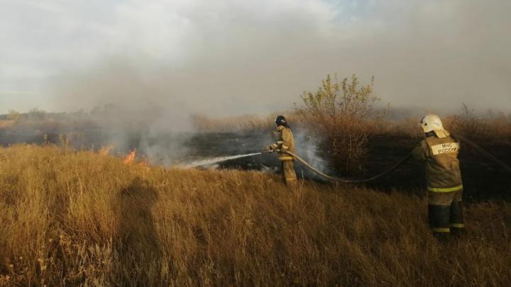 В Цимлянском районе Ростовской области вспыхнул крупный лесной пожар