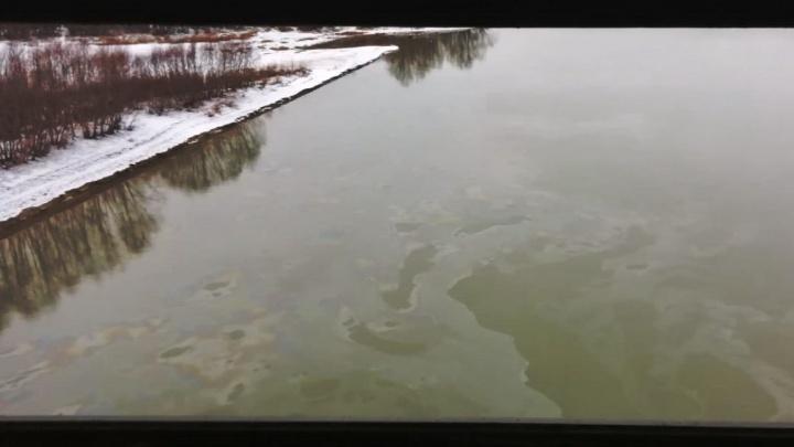 В Иртыше под метромостом обнаружили масляное пятно