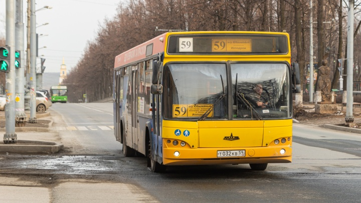 В Перми определили перевозчиков 7 автобусных маршрутов