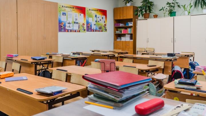 Оперштаб сообщил о ситуации с коронавирусом в школах края: заражения выявили уже в 35