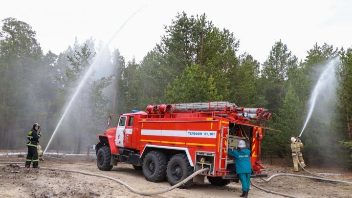 В Зауралье задержали ещё одного поджигателя, устроившего лесной пожар возле деревни
