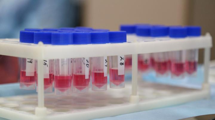 Это может быть коронавирус: рассказываем, с какими симптомами нужно обращаться к врачу