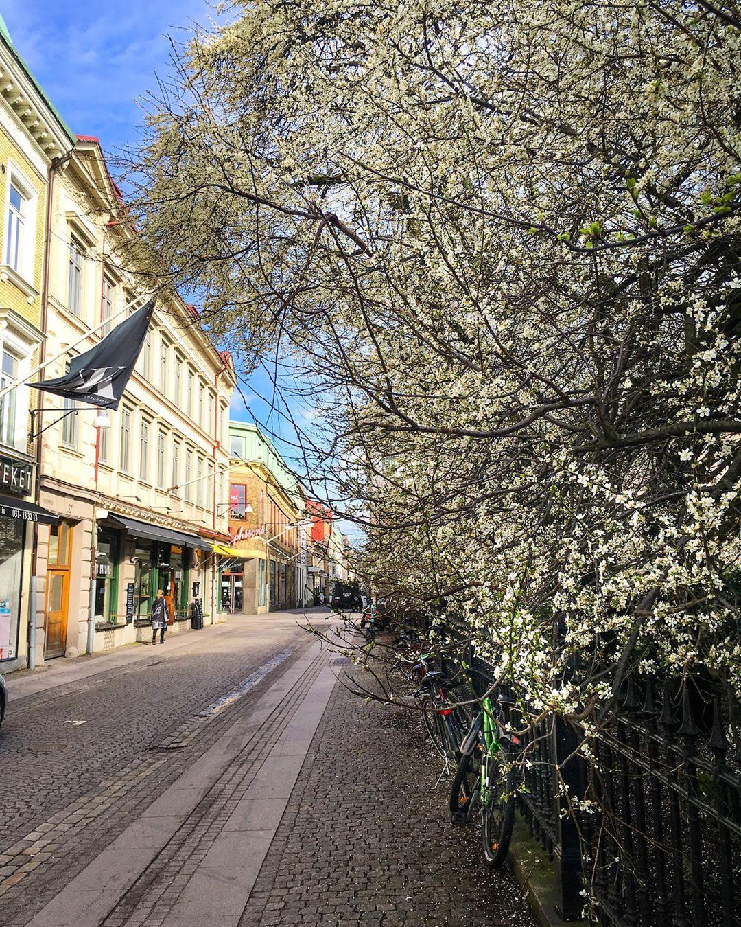 У шведов впереди длинные пасхальные выходные. Пасха, которую отмечают 12 апреля, — аналог майских выходных в России. В этом году большинство сидит по домам. Правительство рекомендует воздержаться даже от поездок к родственникам