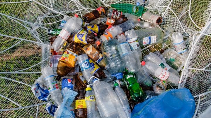 В Перми начали ставить новые контейнеры для мусора на переработку. А что вообще можно перерабатывать?