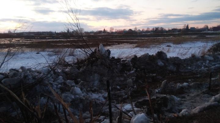 Жительница Балластного карьера вызвала полицию из-за бульдозера и снесённых деревьев