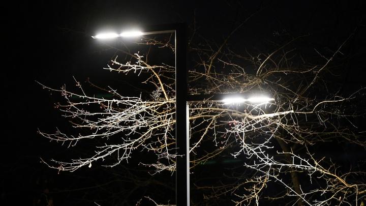 В популярном парке на Юго-Западе установят фонари