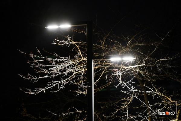 В парке Чкалова установят фонари