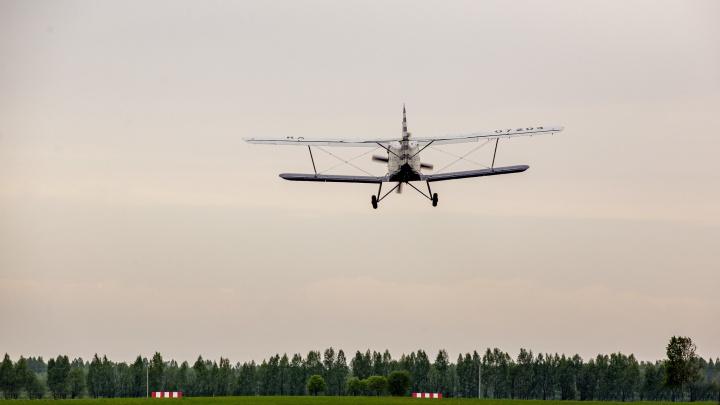 Как идёт строительство частного аэродрома на Ярославском взморье: фоторепортаж