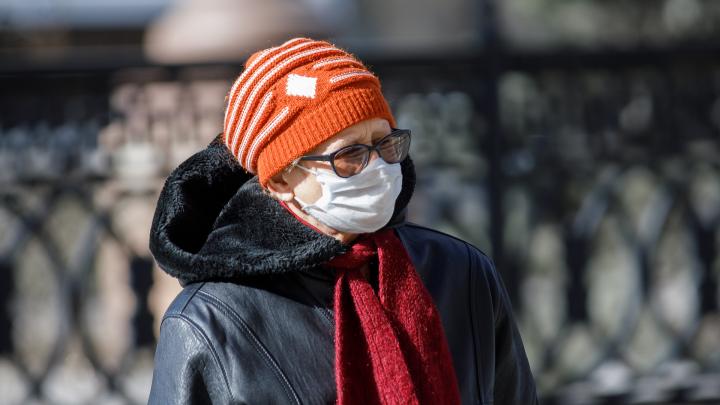 По 600 тысяч масок и перчаток: кто и за сколько изготовил средства защиты для пожилых волгоградцев