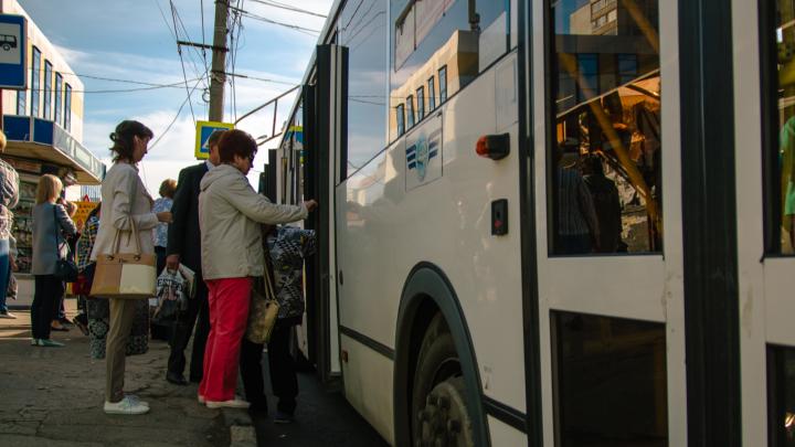 Дождались: в Самаре запустили дачные автобусы
