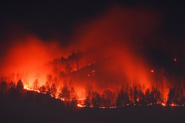 Пламенем была охвачена значительная часть леса рядом с городом