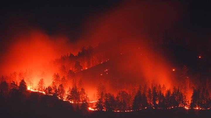 Из-за крупного пожара в заповеднике и окрестностях Миасса запретили ходить в лес