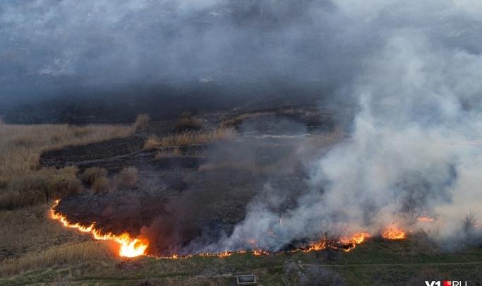 В Волгограде вспыхнул пожар в пойме Мечетки