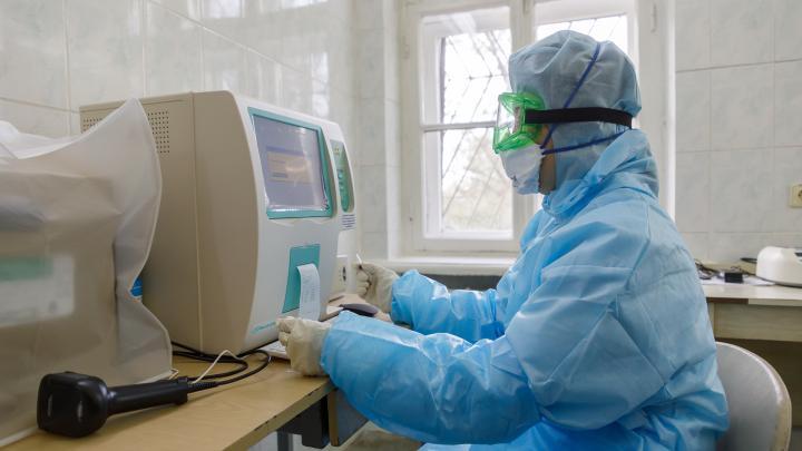 Коронавирус косит работяг: в Волгоградской области 65 человек заразились неизвестным образом