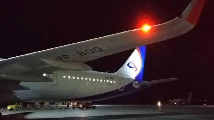 Пермяки, застрявшие из-за коронавируса в Таиланде, прилетели в Казань