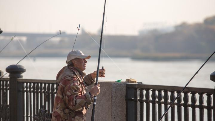 Троллить рыбу запрещено: в Ростовской области вступили в силу новые правила для рыбаков