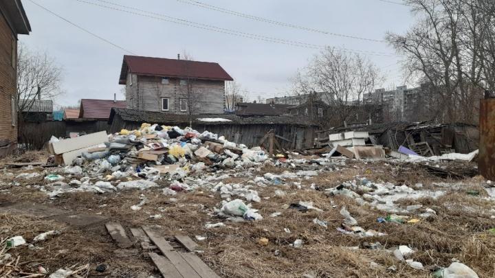 Александр Цыбульский — о мусоре в Поморье: «Количество жалоб на регоператора уже зашкаливает»